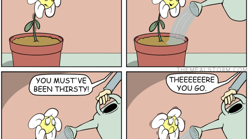 flower gets watered too much